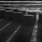 ombres-de-sable-Michel-Trehet
